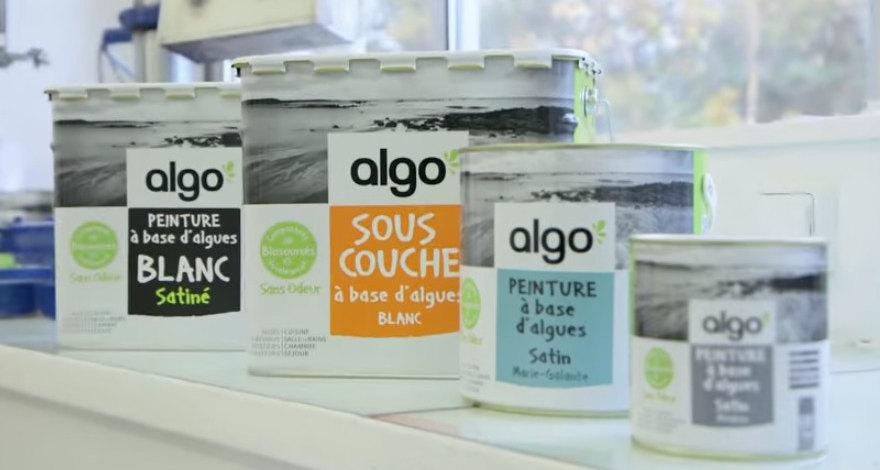 Investir dans Algo Paint